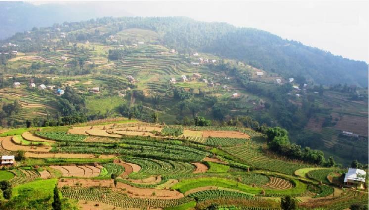 Natural Village Nepal