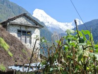 Annapurna South and Himchuli from Ulleri
