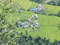 Hille Village